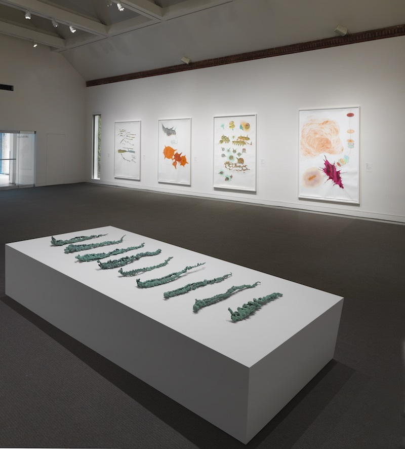 Installation view of work by Jorinde Voigt, Drawing Redefined: Roni Horn, Esther Kläs, Joëlle Tuerlinckx, Richard Tuttle, and Jorinde Voigt, deCordova Sculpture Park and Museum, Lincoln, MA, Photograph by Clements Photography and Design, Boston