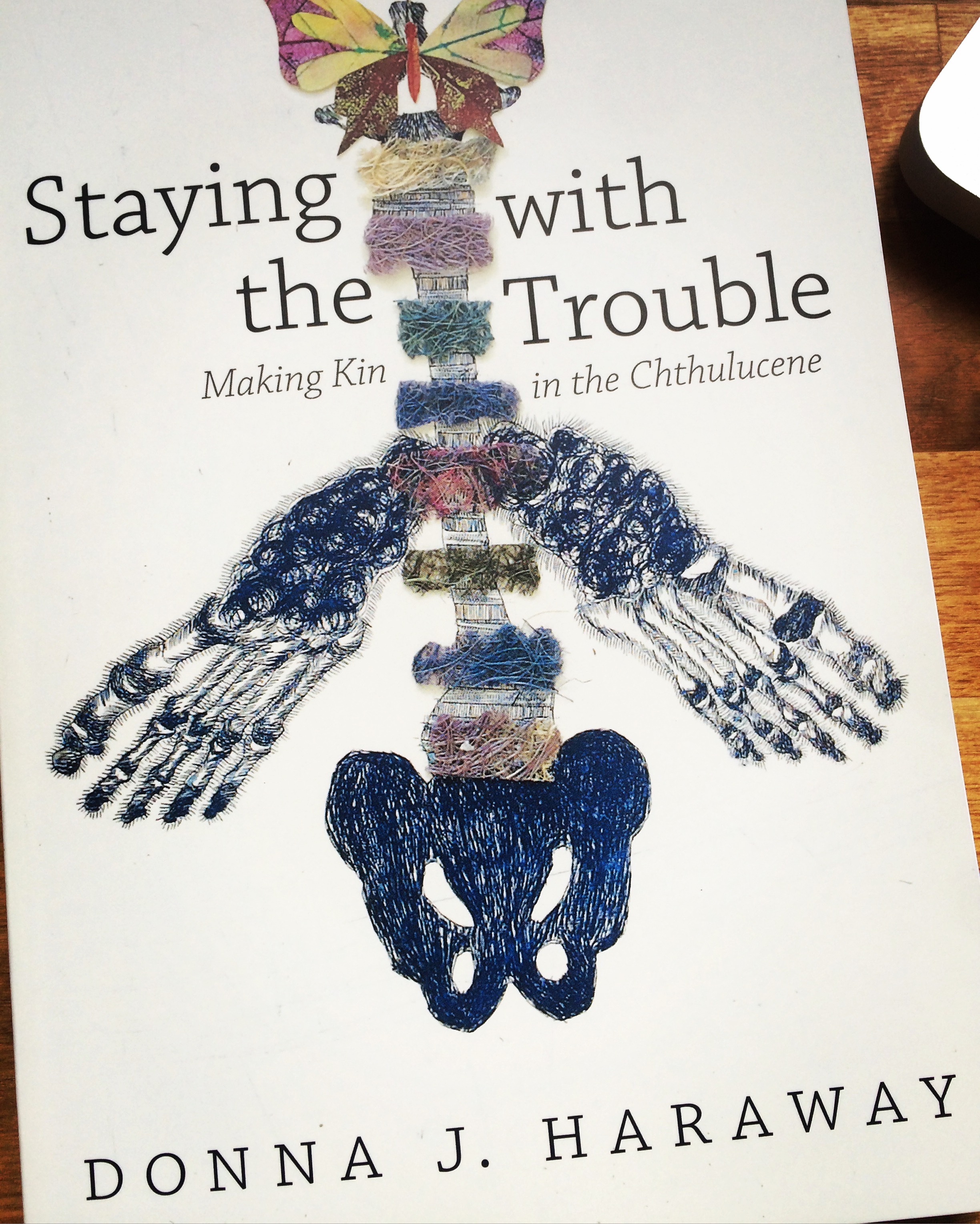 Donna Haraway shows us we need new ideas and new ways of thinking, new kinds of stories to think with, because the old ones are failing us. by Julie Poitras Santos